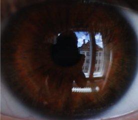 Donker bruine ogen